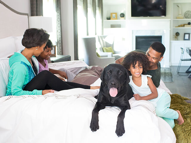 Family laying on bed with a black lab