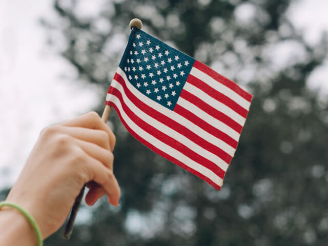 Person holding minature American Flag in the air