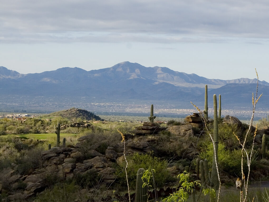 Hiking trails in Marana