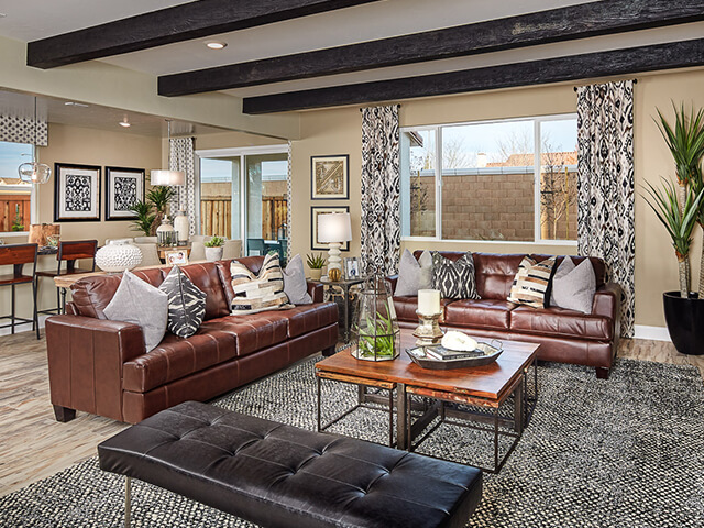 Living room with brown leather couches